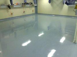 Floor Stripping & Sealing