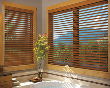 sale blinds for glass treatments window discount home perfect your lowes curtains decor appliance door sliding