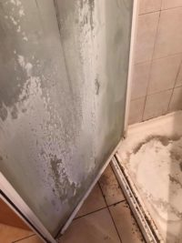 Calcium Build up on Shower Screens